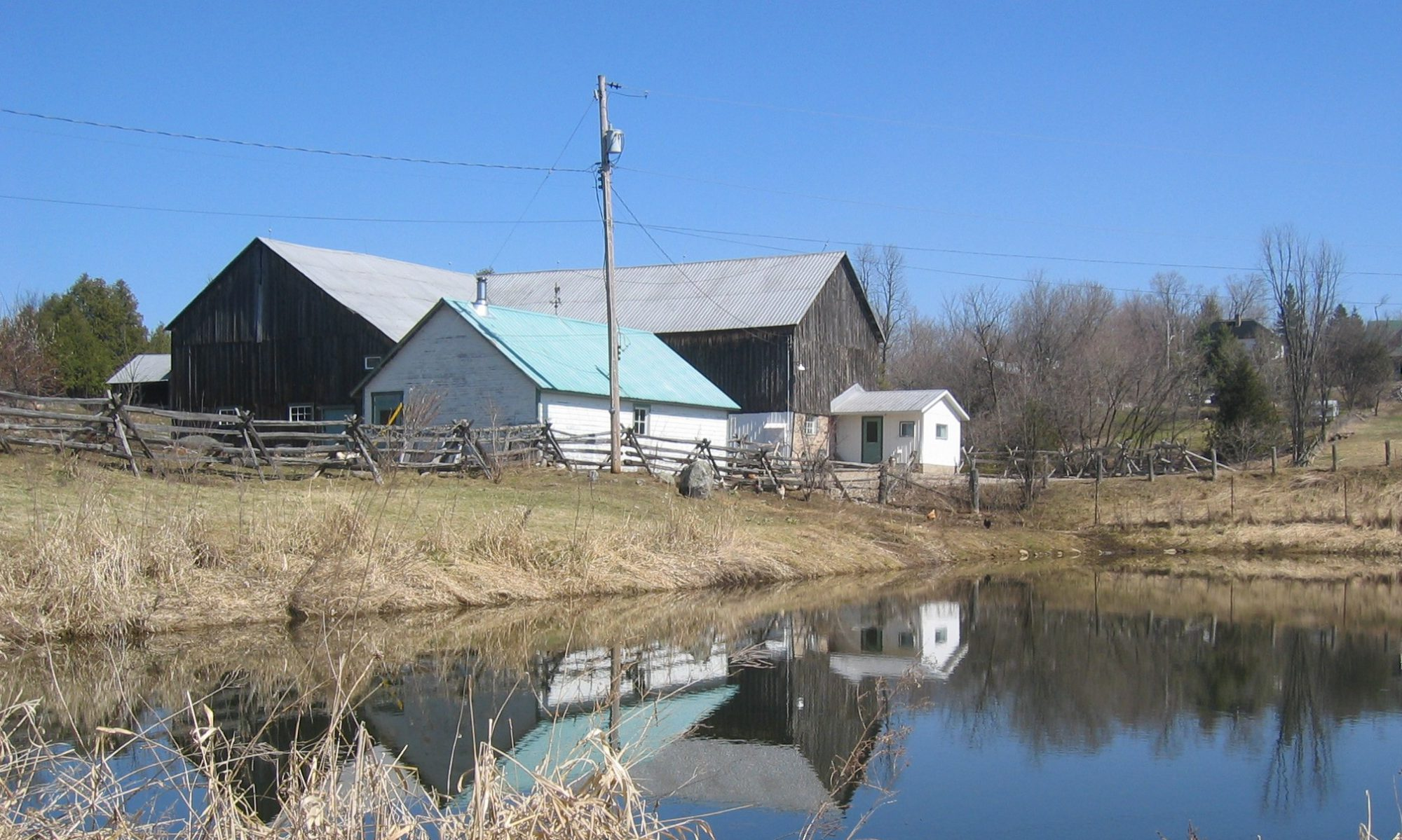 Ferme Ouellette Farm